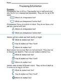 Processing Information - Main Idea Assessment