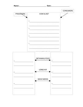 Producer & Consumer Comparison Graphic Organizer