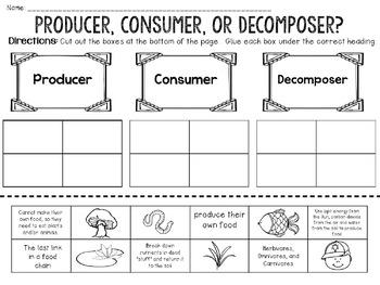 producer consumer decomposer activity bundle by jh lesson design. Black Bedroom Furniture Sets. Home Design Ideas