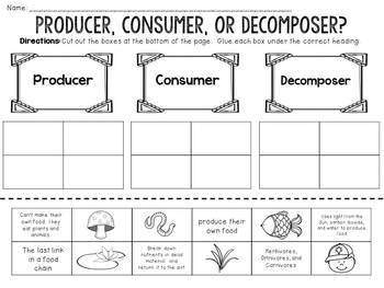 Producer Consumer Decomposer Cut and Paste