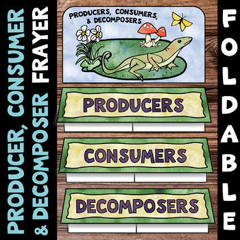 Producer, Consumer, Decomposer Foldable - Frayer Model Format