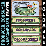 Producer, Consumer, Decomposer Foldable - Great for Interactive Notebooks