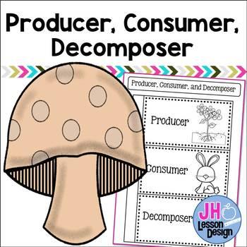 Producer Consumer Decomposer Interactive Notebook Activity