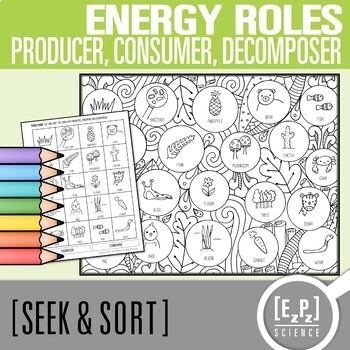 Producer, Consumer & Decomposer Seek & Sort Doodle Page and Card Sort