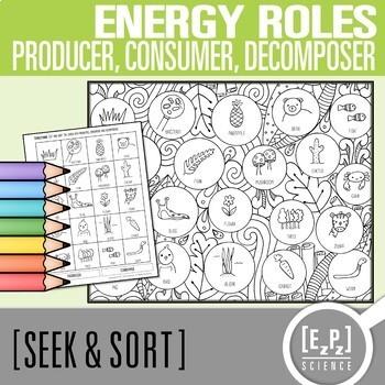 Producer, Consumer & Decomposer Seek and Sort Science Doodle & Card Sort