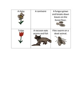 Producer, Consumer, and Decomposer Sort