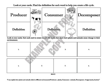 Producer, consumer, decomposer (life cycle)