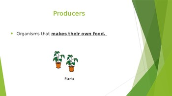 Producers, Composers and Decomposers Interactive PowerPoint