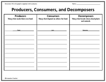 producers consumers decomposers graphic organizer by innovative teacher. Black Bedroom Furniture Sets. Home Design Ideas