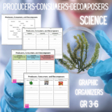 Producers, Consumers, Decomposers Graphic Organizer (Dista