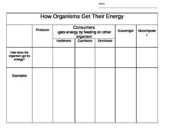 What Are Producers and Consumers? Science Printable (6th-12th ...