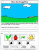 Producers, Consumers, Decomposers Science Lessons, Worksheets, Inquiry