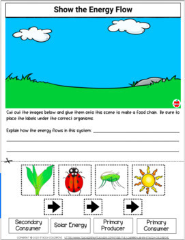 Producers and Consumers, and Decomposers Worksheet for 1st - 4th ...