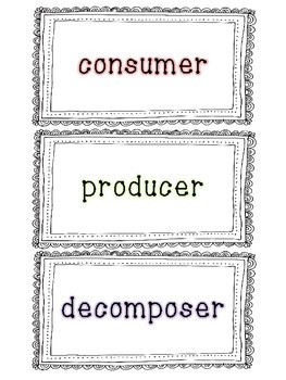 Producers, Consumers, & Decomposers Sort