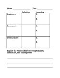 Producers Consumers & Decomposers Worksheet