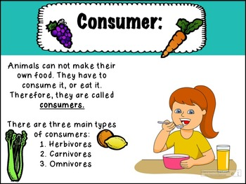 Producers, Consumers, Decomposers and More Powerpoint