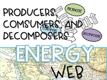 Producers, Consumers, and Decomposers Energy Web Hands-On Ecosystem