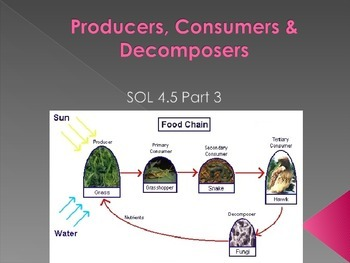 SOL 4.5: Producers, Consumers, and Decomposers PowerPoint