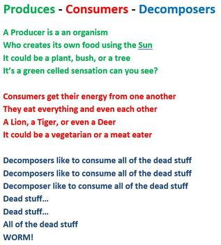 Producers, Consumers, and Decomposers Rap Lyrics