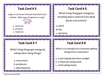 Producers, Consumers and Decomposers Task Cards