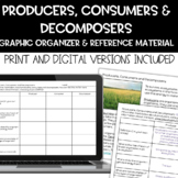 Producers, Consumers and Decomposers Vocabulary Activity