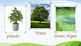Producers, Consumers and Decomposers eBook
