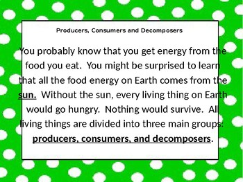 Producers and Consumer and Decomposer