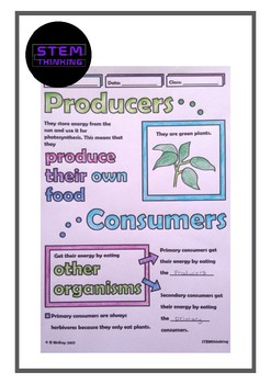 Producers and Consumers Middle School Biology, Science Doodle Notes