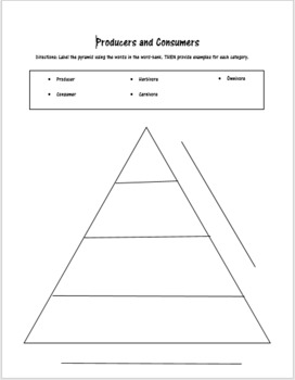 Producers and Consumers Pyramid