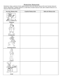 Productive Resources Worksheet