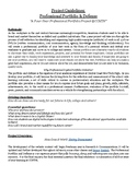Professional Portfolio Project Guidelines
