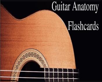 Professor B's Guitar Anatomy FLASHCARDS