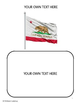 Professor Ladybug: Learn About Our State Flags Series, California State Flag
