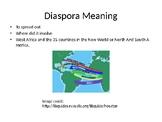 Profile of the African Diaspora