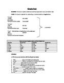 Progressive Verb Tenses / Simple Verb Tenses ESL Review Sheets