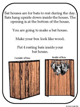 Project Based Learning Activity - Bats - Kindergarten & First Grade