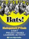 Project Based Learning Activity - Bats - Kindergarten & Fi