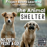 Project Based Learning: Run An Animal Shelter (PBL) Print