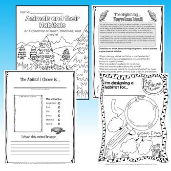 Design an Animal Habitat: Project-Based Learning Activity