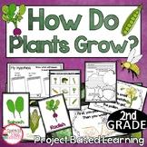 2nd Grade Parts of Plants Activities   Plant Unit for Proj