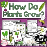 Project Based Learning for Plants 2nd Grade