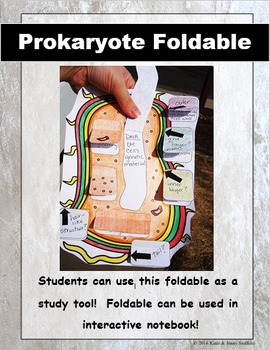 Prokaryote Cell - Bacteria Cut and Paste Foldable