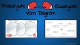Prokaryote vs Eukaryote Venn Diagram