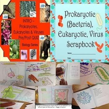 Prokaryotes, Eukaryotes & Viruses Biology Life Science Quiz & Scrapbook