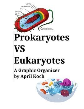 Prokaryotes VS Eukaryotes Graphic Organizer