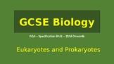 Prokaryotes and Eukaryotes PowerPoint