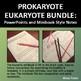 Prokaryotes vs Eukaryotes Bundle: PowerPoints and Minibooks