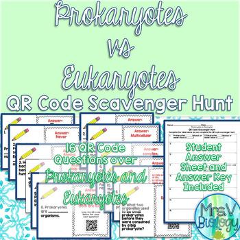 Prokaryote Vs Eukaryote Teaching Resources Teachers Pay Teachers