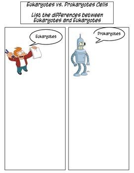 Prokaryotes vs. Eukaryotes Workbook