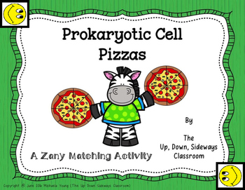 Prokaryotic Cell Pizzas Matching Review Activity